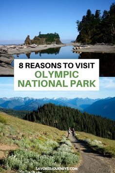 Olympic National Park in Washington State is a prime example of the beauty and natural wonder of the Pacific Northwest. It's a great place to visit and here's why! Great Places, Beautiful Places, Places To Travel, Places To Visit, Olympics, Future Travel, National Parks, Natural Wonders, Washington State