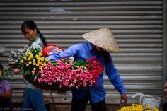 vietnamese flower seller