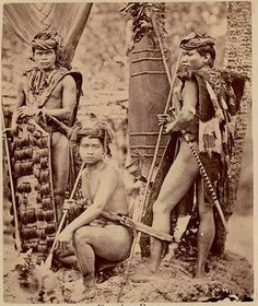 Borneo is the largest island in the world. The indegenous tribes are called Dayaks. There are over 250 tribes of Dayaks in Borneo. Vintage Pictures, Old Pictures, Old Photos, Funny Vintage Ads, Vintage Humor, Polynesian People, Old Warrior, Warriors Pictures, Primitive Survival