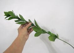 Learn how to make a wedding flower centerpiece, a bridal bouquet, corsages, boutonnieres and church florals.  Buy wholesale flowers and discount florist supplies.