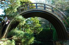 Visit the Japanese Tea Garden during free admission hours.You can enter this lovely garden in Golden Gate Park for free on Mondays, Wednesdays and Fridays between 9 a.m. and 10 a.m. Photo: Jared Plutzer