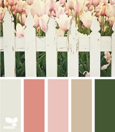Spring blooms and fun spring color palette for styled photo sessions. Colour Schemes, Color Combos, Color Patterns, Colour Palettes, Support Photo, Color Lila, Color Harmony, Design Seeds, Spring Blooms