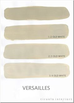 Chalk Paint - Versailles mixed w/ Old white (color card)