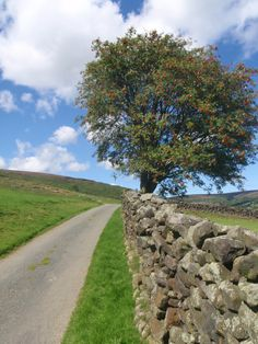 Road to Baysdale ~ North Yorkshire Moors.