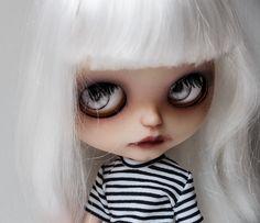 Death stare   Flickr - Photo Sharing!
