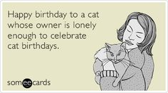 Happy birthday to a cat whose owner is lonely enough to celebrate cat birthdays. I am def this person