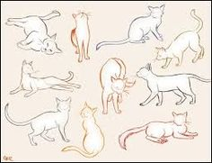 Image result for archer faun draw poses
