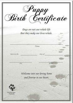 Birth Certificate Form, Certificate Design Template, Adoption Certificate, Dog Whelping Box, Whelping Puppies, Funny Certificates, Rabbit Adoption, Dog Birth, Puppy Litter