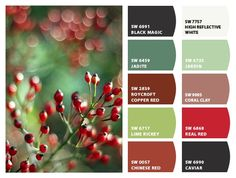 ColorSnap by Sherwin-Williams – ColorSnap by Reyhan S. Christmas Palette, Christmas Trends, Christmas Colors, Red Colour Palette, Colour Schemes, Color Palettes, Color Blending, Color Mixing, Red Berries