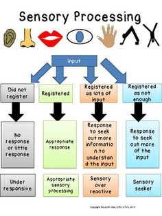SENSORY PROCESSING 101: 5 visuals to help explain sensory