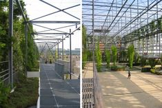 A Daily Dose of Architecture: MFO Park