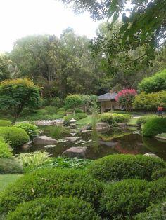 Japanese garden, mt coot-tha botanical garden. Brisbane, Australia