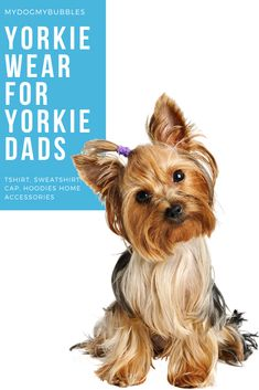 A dog wear collection from MydogMybubbles made for Yorkie dads and Yorkie Terrier lovers with t-shirt, hoodie, sweatshirts. #mydogmybubbles #yorkie #yorkiewear #yorkieshirt #yorkiedadshirt #yorkiedad #yorkiehoodie #yorkiesweater #yorkielover #yorkieowner #yorkiedog