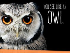 You have the eyes of an owl! You have very keen eyes, that can discover even the smallest animal, and lock in on it and make your way with it.