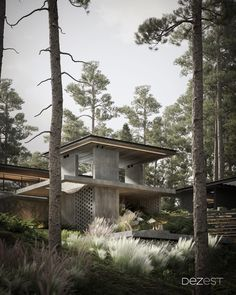 Make the reinforced concrete of the cottage part of the forest ecosystem.
