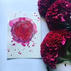 Friday I am in love ❤️ I tried something different with this peony. I see a lot of great artists here, who draw their flowers like this. So I thought I give it a shot. And then of course add a lot of pink and red watercolor splatter to it! Take care and lots of love, Pia x . . . .  #loosewatercolor #loosewatercolour #loosewatercolorflorals #watercolorpainting #surelysimpleart #simplepainting #watercoloreveryday #dailypaintings #simplewatercolor #watercolorbeginner #watercolorbeginners… Watercolor Beginner, Easy Watercolor, Floral Watercolor, Watercolor Paintings, Watercolor Splatter, Am In Love, Easy Paintings, I Tried, Great Artists