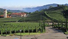 Vale dos Vinhedos, Brazil wine country  #vacationinspiration #travelinspiration #imissbrazil #wine