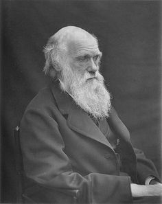 By 1878, an increasingly famous Darwin had suffered years of illness.