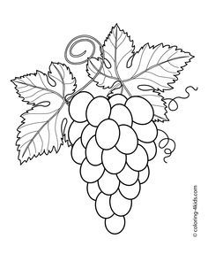 Grapes With Leaves Fruits And Berries Coloring Pages For Kids Printable Free