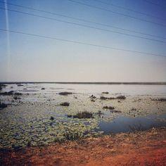 Lake Kyoga on the road to Soroti