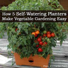 How 5 Self-Watering Planters Make Vegetable Gardening Easy