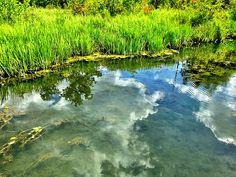Reflections #dufferinislands