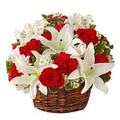Conveniently send flowers from the online florist and surprise your dear ones. Make your presence felt with a well-arranged flower bouquet or basket through the stunning flower delivery in Chandigarh. Send Flowers Online, Order Flowers, Cherry Blooms, White Carnation, Prayer For Peace, Online Flower Delivery, Online Florist, Little Flowers, Top Flowers