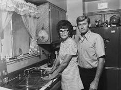 Image result for Bill Owens suburbia
