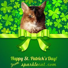 Happy St. Patrick's Day from ME!
