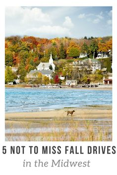 There are plenty of places around the U.S. to see the changing leaves in all their glory, but here are our five not-to-miss fall drives in the Midwest. - Kirsten Maxwell Travelocity Gnational Gnomad