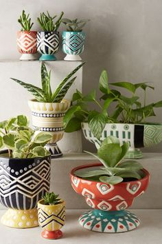 Anivalda Mini Garden Pot - anthropologie.com