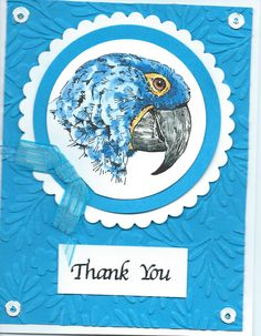 blue parrot Thank You