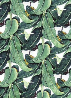Martinique Wallpaper As Seen In Beverly Hills by FabricAlley7