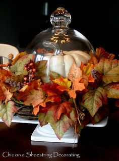 Chic on a Shoestring Decorating fall centerpiece.  http://chiconashoestringdecorating.blogspot.com/2010/09/fall-centerpiece-love.html