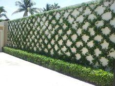 Image result for sloan landscaping jupiter
