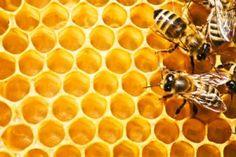 natuurlijke structuur honinggraad