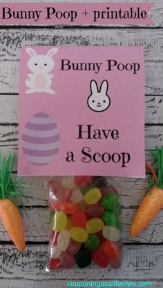 Bunny Poop with printable