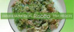 Chicken & Garden Green Risotto For Dogs Recipe