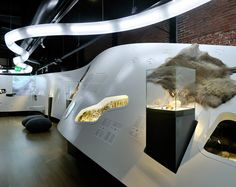 Archaeology of the Netherlands--displays set into forms and furniture