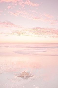 Pink Summer Day at the Beach! Beautiful World, Beautiful Places, Beautiful Pictures, Cute Wallpapers, Wallpaper Backgrounds, Blush Wallpaper, Ocean Wallpaper, Pink Aesthetic, Aesthetic Wallpapers