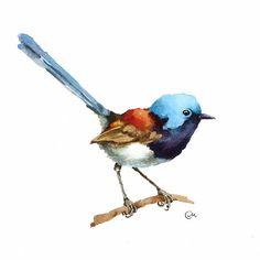 Fairy Wren Original Watercolor Bird by CMwatercolors on Etsy