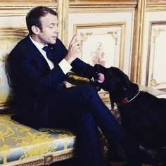French President Emmanuel Macron's dog, Nemo, was recently captured taking a leak against the fireplace in the presidential office when Emanuel Macron, Sigmar Gabriel, Celebrity Dogs, Brigitte Macron, Nemo, Dog Pee, Paris Match, French President, Jean Michel