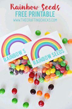 Utiliza el arcoiris como un tema de fiesta, ya sea un cumpleaños, baby shower, o xv años. Además de ser un tema amplio y versátil, logrará...