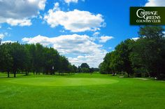 $18 for 18 Holes with Cart at Carriage Greens Country Club in Darien near Bolingbrook, #Illinois #golf
