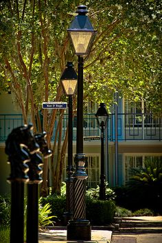 Port Orleans French Quarter    Nice place to stay at disney