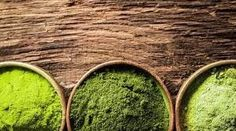 Maeng Da is a very well-known variety of Kratom powder available. At Kratom Kilos, we have its varieties as Green, White and Red Maeng Da Powder. For details please visit US…. Where To Buy Kratom, Opiate Withdrawal, Mitragyna Speciosa, How To Cure Anxiety, Coffee Plant, Herbal Medicine, Natural Medicine, Federal, Plants