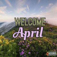 Welcome to April!