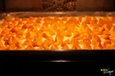 WIEN EN VOGUE - Apricotcake
