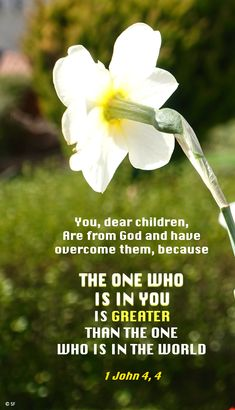 1 John 4, World 1, Being In The World, Greater Than, God, Little Children, Dios, Allah, The Lord
