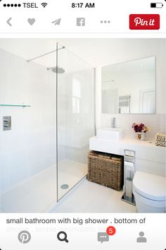 small bathroom with big shower would make sure base of shower was level with bathroom floor like laundry basket where it is simple look